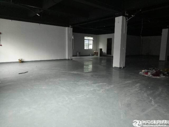 惠阳沙田高新园区一楼分租1200平方带装修