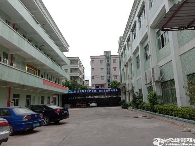 龙岗深汕公路边新出标准厂房楼上1200平出租大小分租