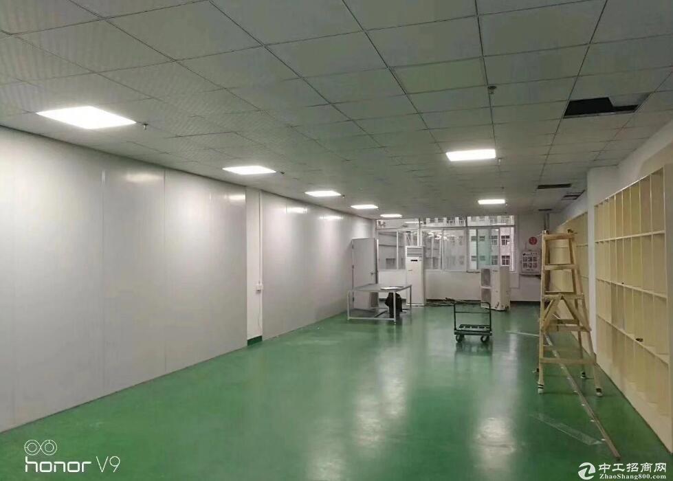 葛店开发区北部,红本厂房2000平方低价出租可分租!