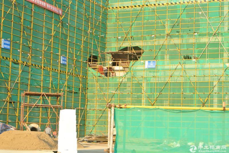 新洲问津厂房出租,二楼18元/平,层高4.5米