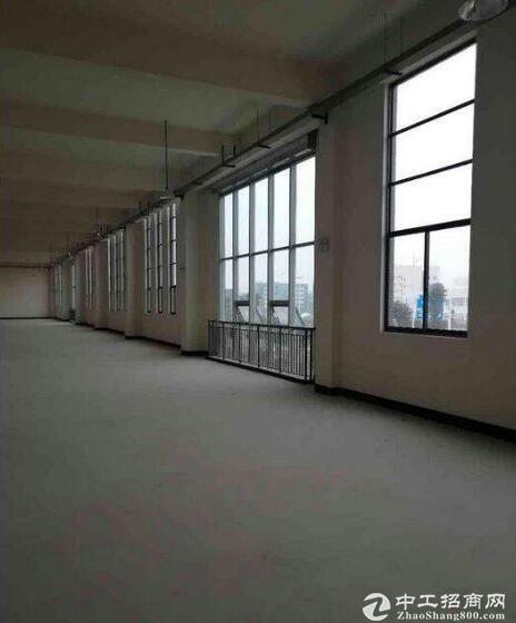 新洲区政府附近,1500平标准厂房出租,汽车电子优先
