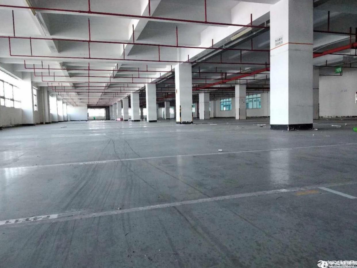 石岩塘头原房东4.5.6楼单层1800平米可分租