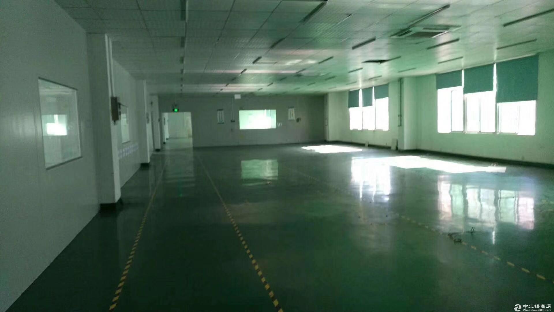 坑梓新出楼上精装修750平方带办公室厂房出租