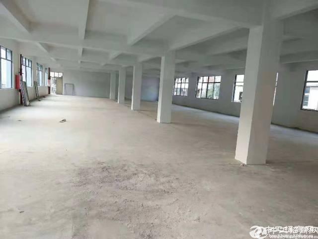 福永小独院2800平三层原房东招租