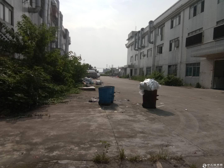 沙田镇原房东新出全新厂房1000平,现成办公室装修,位置好环境佳