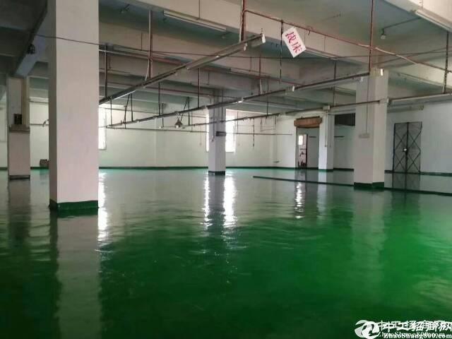 原房东红本有消防喷淋34000平米厂房出租可分租