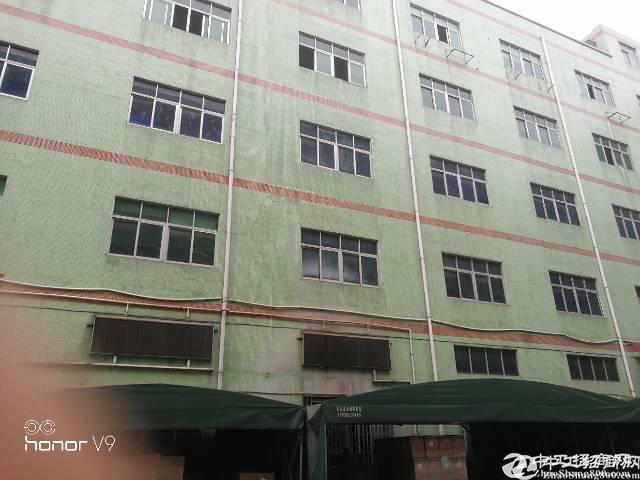布吉上李朗新出楼上5200平厂房出租可分租