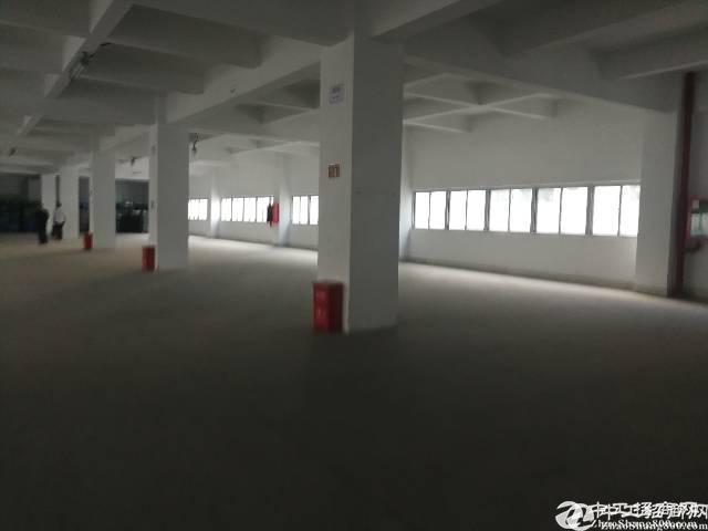 石岩水田外环路(原房东)1450平米厂房招租