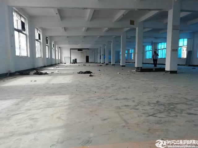 15元龙岗原房东实际面积楼上600平厂房出租