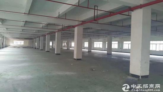 坑梓金沙厂房招租标准一楼1100平方出租