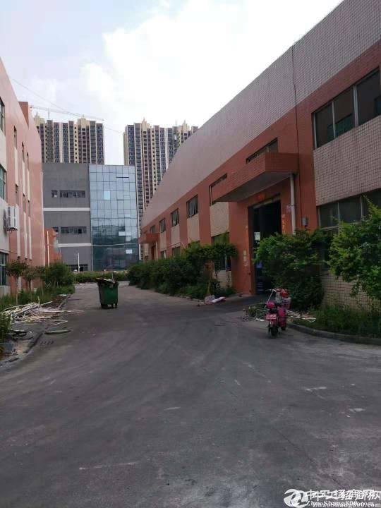 惠州新圩博深高速路口新出独院钢结构厂房10000