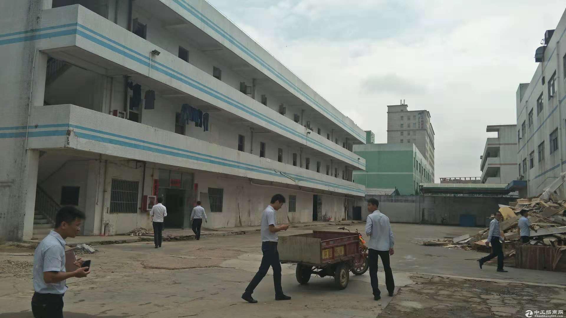 坪山原房东坑梓新出1楼厂房987平带装修可分租