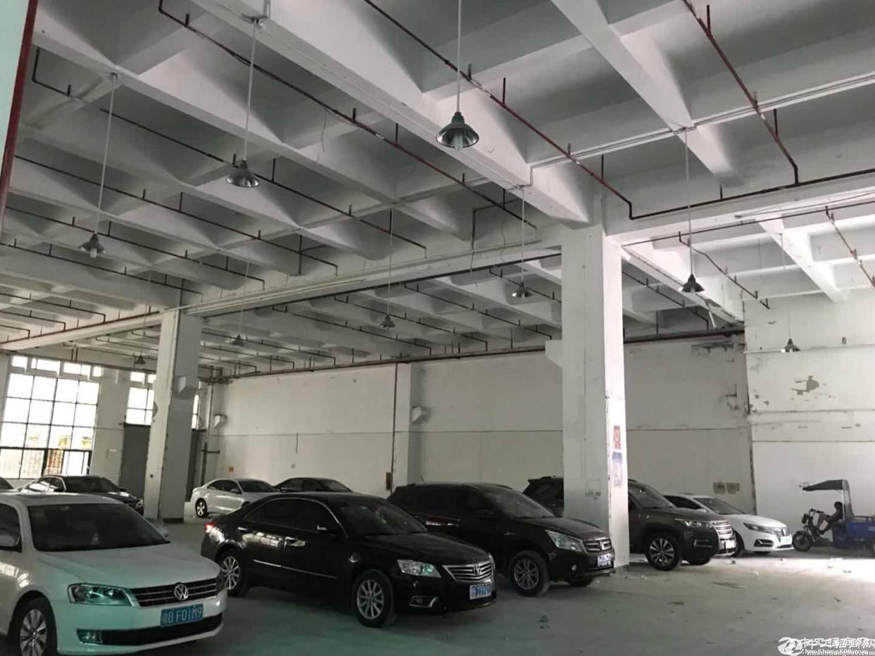 坂田利金城附近新出一楼8米高5500平方大小分租