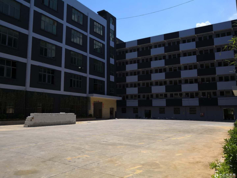 新出坪中中心区2楼12000平米底价16块出租