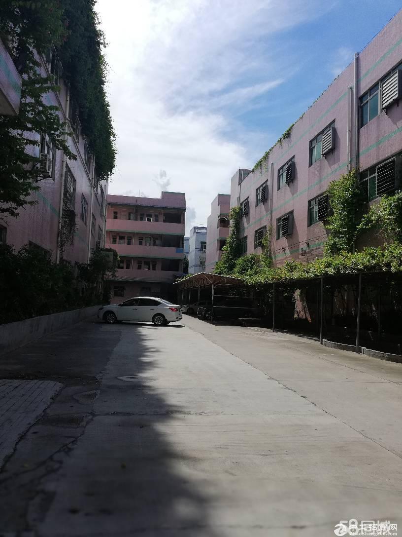 深圳龙岗区平湖鹅公岭三楼厂房招租 面积1700平方