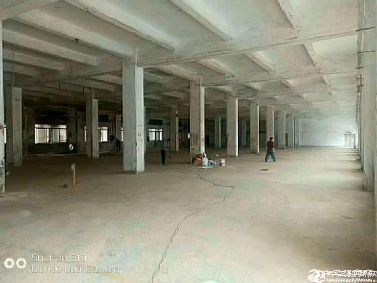 惠州新圩厂房]可做污染独院钢构厂房8600平招租