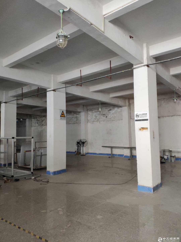 深圳大型物流园高度10米丙2类消防20000平米可分租