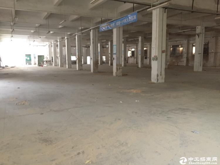 坪山 碧岭原房东厂房850平方一楼,实际面积出