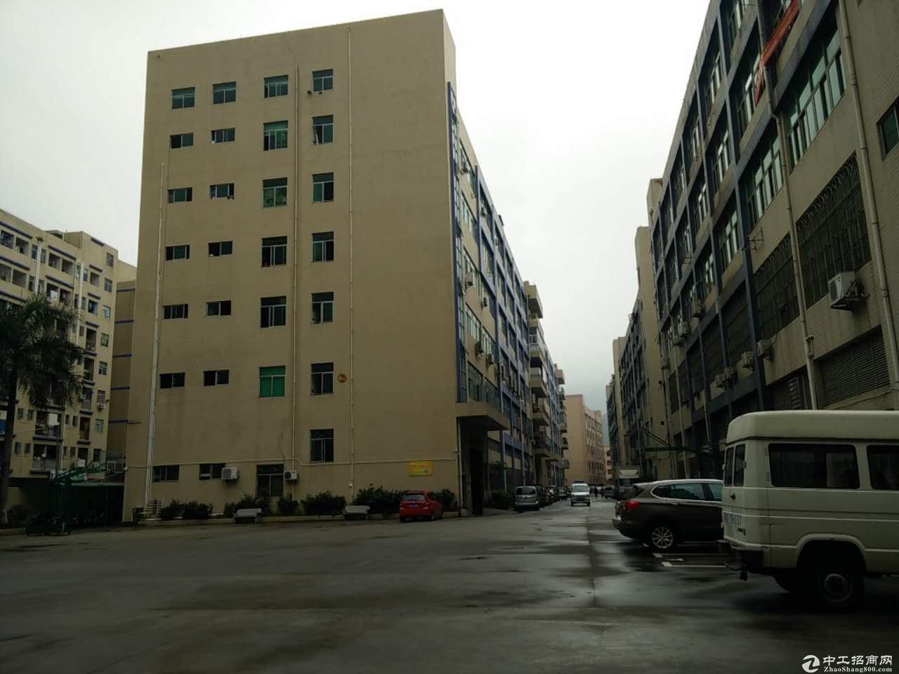 石岩汽车站附近新出楼上700平带装修厂房