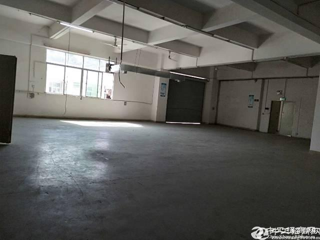 石岩石龙大道780平带装修厂房招租