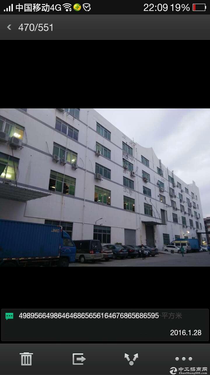 石岩罗租第五工业区600平米精装修厂房出租