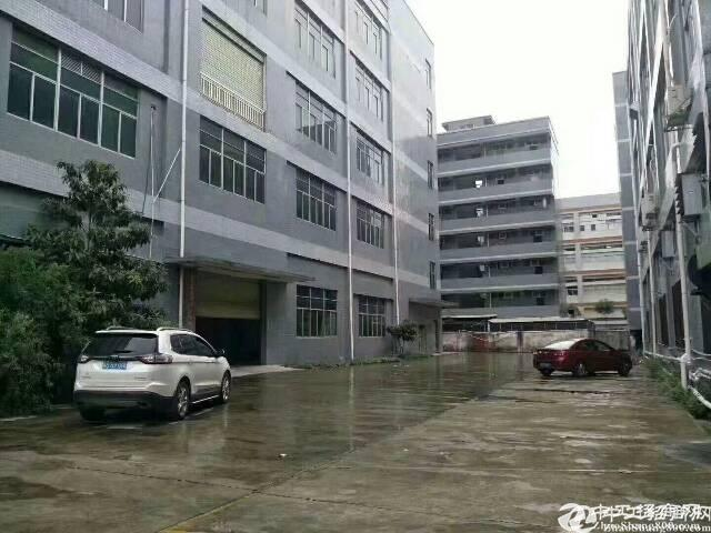 横岗安良楼上800平米精装厂房招租,带地坪,形象好