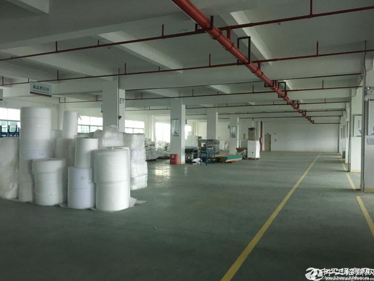 观澜新塘红本单一层厂房1800平米低价出租