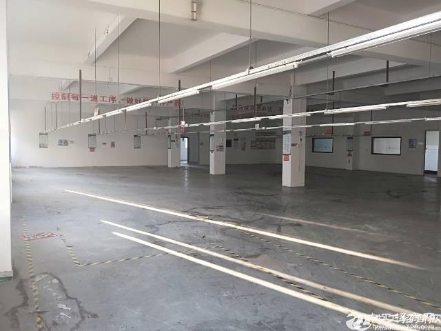 龙岗龙东厂房出租5000平大小面积可分租