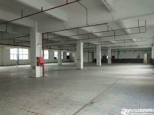坪地新出带红本厂房二楼楼3600平米厂房出租层高4.5米
