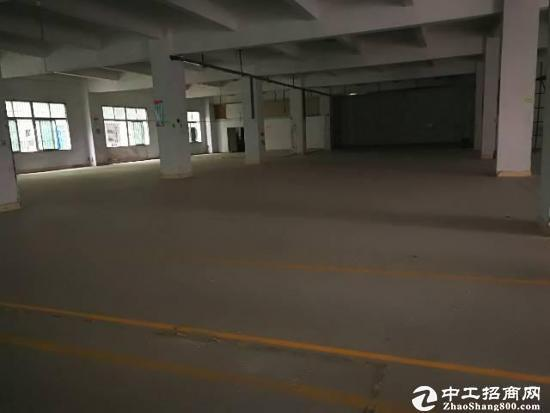 坪地新出标准一楼厂房1600平米层高5.5米空地大的厂房出租