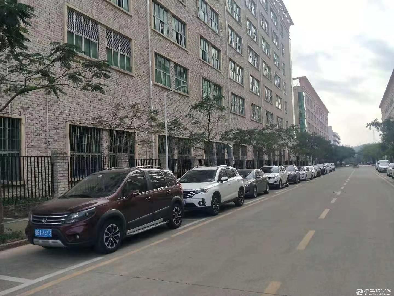 原房东一楼标准厂房1760平 水电到位,带行车