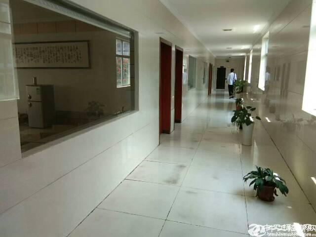 龙岗坪地楼上800平精装修厂房出租