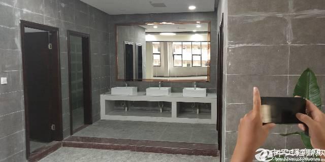 布吉百鸽笼地铁新出800平带装修电商办公室出租