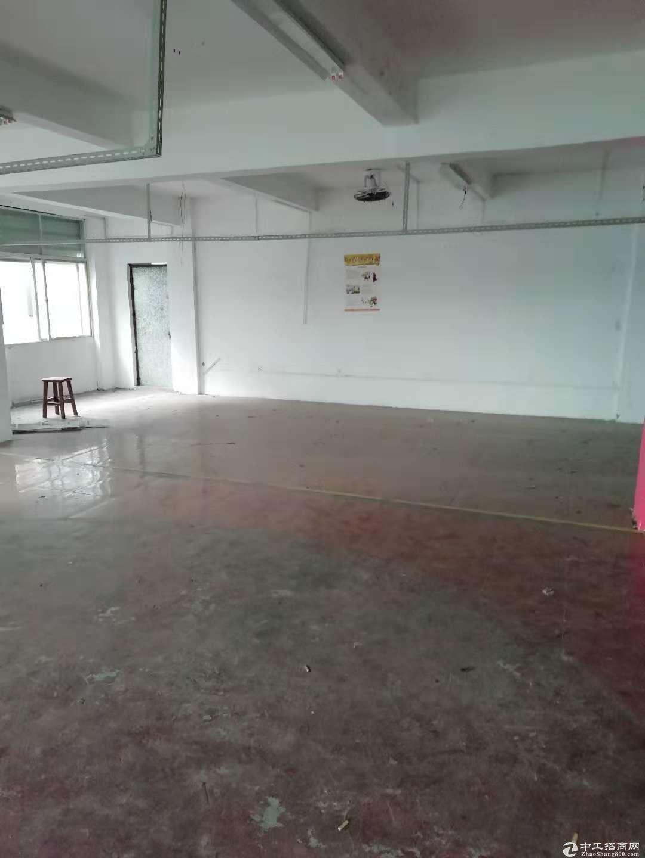 横岗新塘坑88工业区新出420平厂房出租