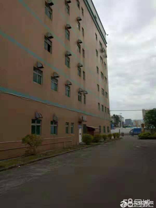 布吉水官高速出口新出独栋8米高厂房单层5000平