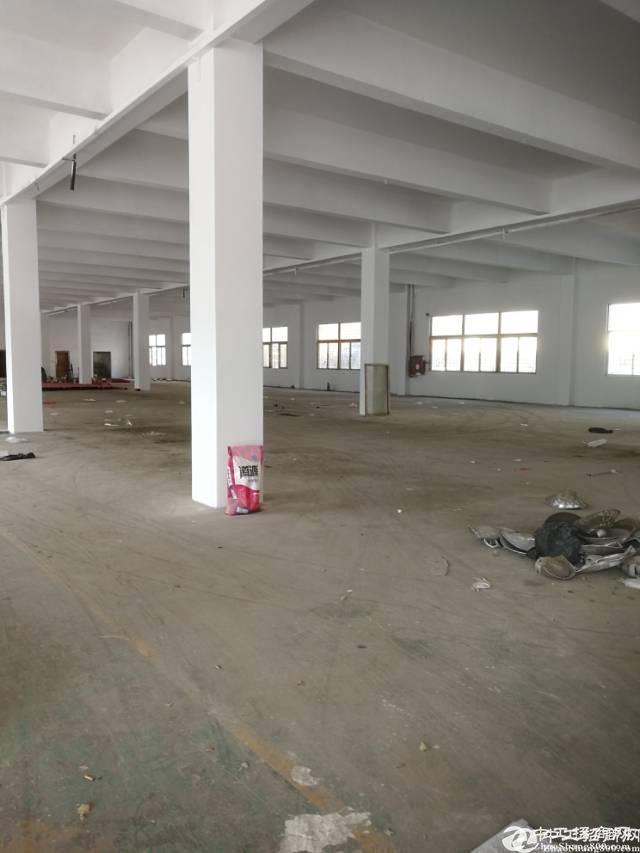 横岗六约深坑独院单一层厂房3500平米招租