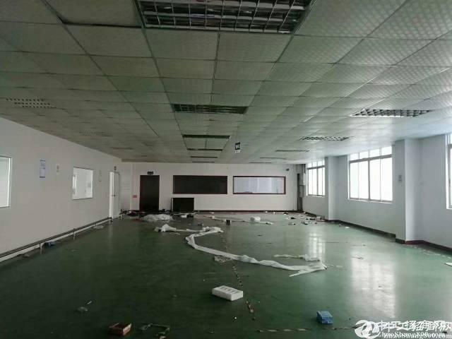 龙岗龙东原房东一楼1500平带行车厂房出租