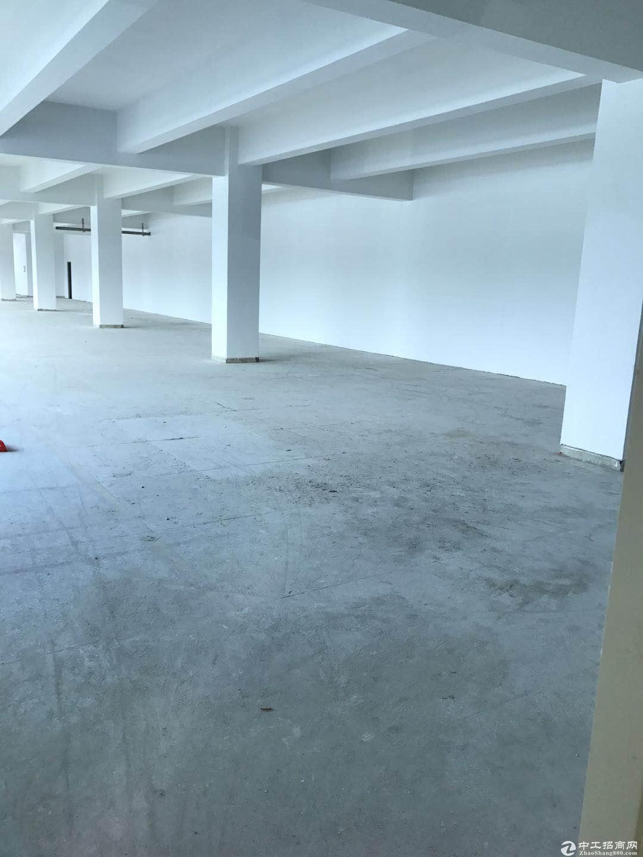 横岗 四联路边适合汽车维修美容点厂房500平米招租