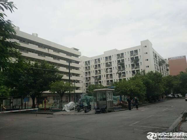 低价,石岩水田红本厂房楼上4000平方出租,可办环评