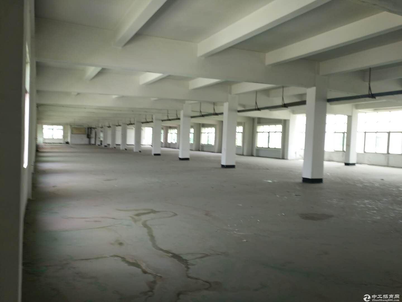 沙田镇原房东高速工业区整层一楼2000平地坪漆厂房可分租-图2