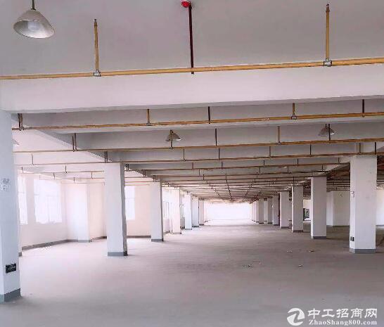 汉阳黄金口淘金路,框架结构厂房产业园库房出租