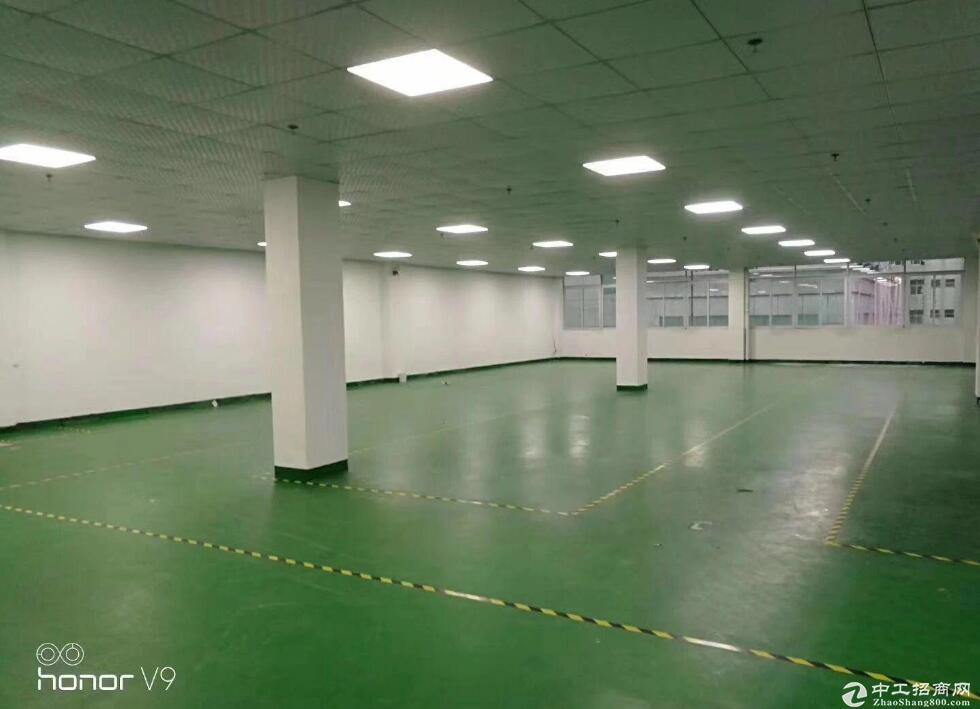 黄陂建材城库房出租,1000平起 18元包物业