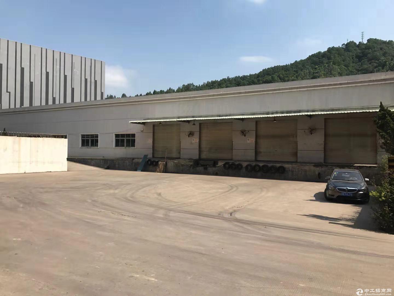 横岗钢构仓库2300平.带平台.低价急租