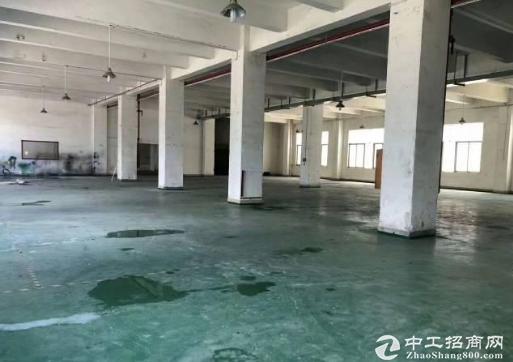 布吉丹竹头新出1楼1600平方厂房可分租