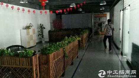 布吉李朗科技园1700平带装修厂房出租
