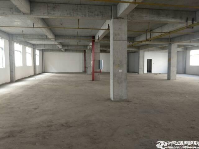 东西湖生物医药产业园5000平厂房,独家大盘