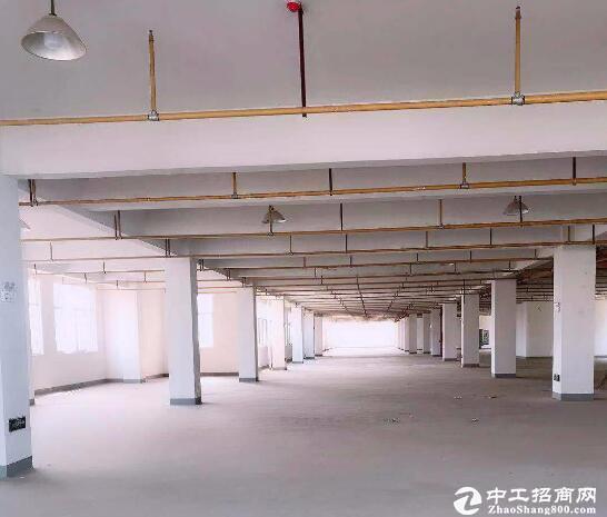 汉阳黄金口淘金路,2000平框架结构厂房产业园库房出租