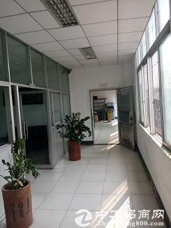 松岗车站附近一楼500平方高6米带装修原房东低价23元出租