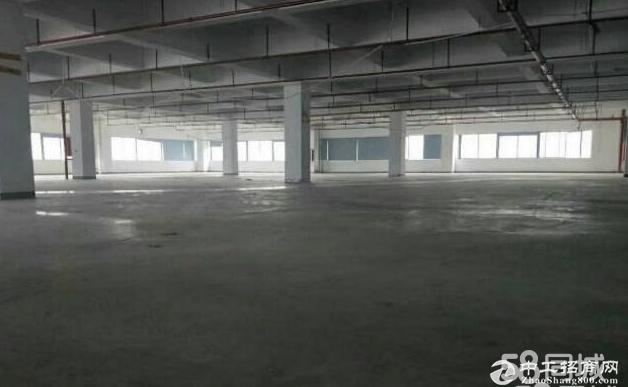 横岗六约新出原房东1800平厂房带装修办公室
