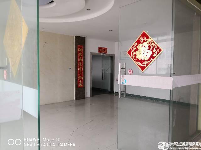 南山西丽阳光厂房500㎡招租带装修带3间办公室